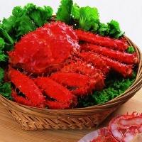沪泽 海鲜组合 智利帝王蟹皇帝蟹海蟹500g*2只 新西兰青口贝淡菜翡翠贻贝1kg/包 海鲜水产
